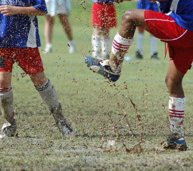 rigenerazione manto erboso sportivo
